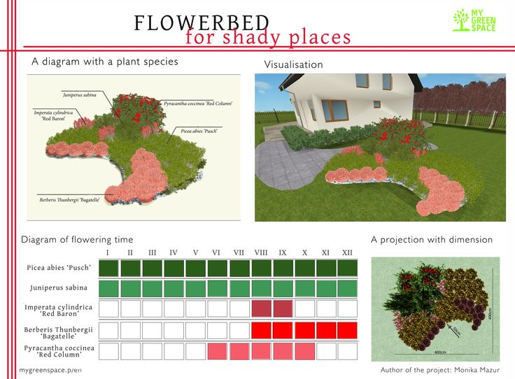 Flowerbed for shady places. Make your own project of flowerbed with MyGreenSpace mygreenspace.pl/en