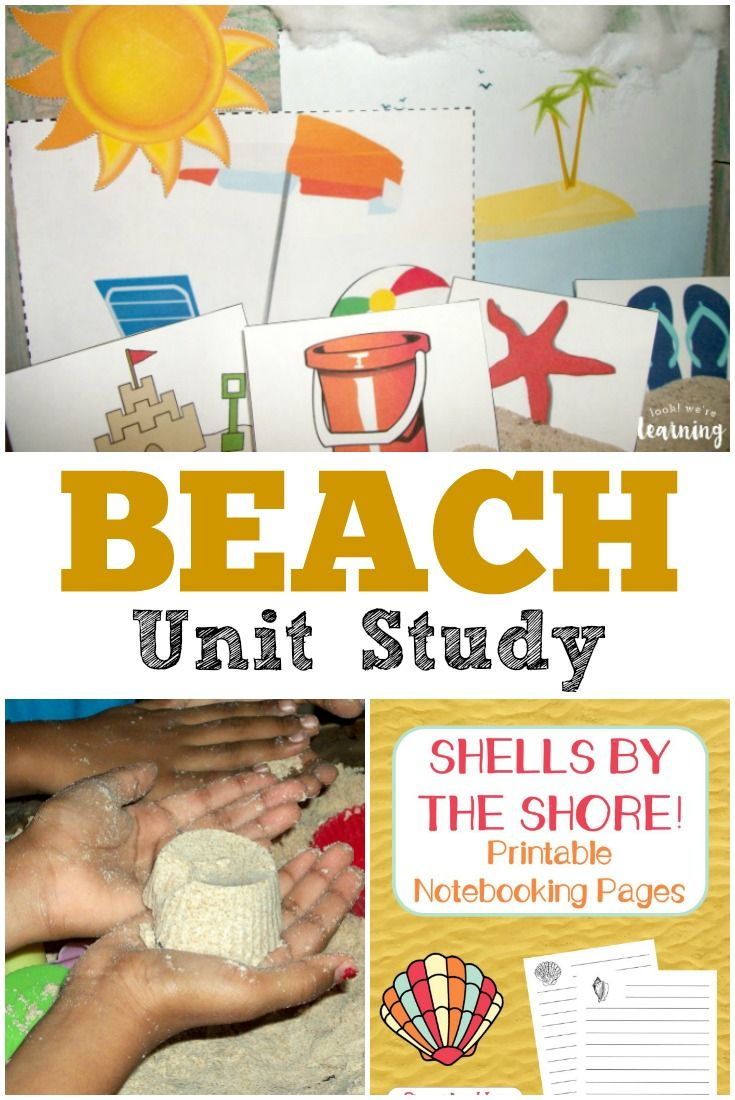 Unit study colors preschool - Beach Unit Study