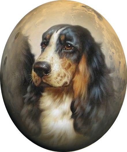 курсируют круглые картинки собак этот