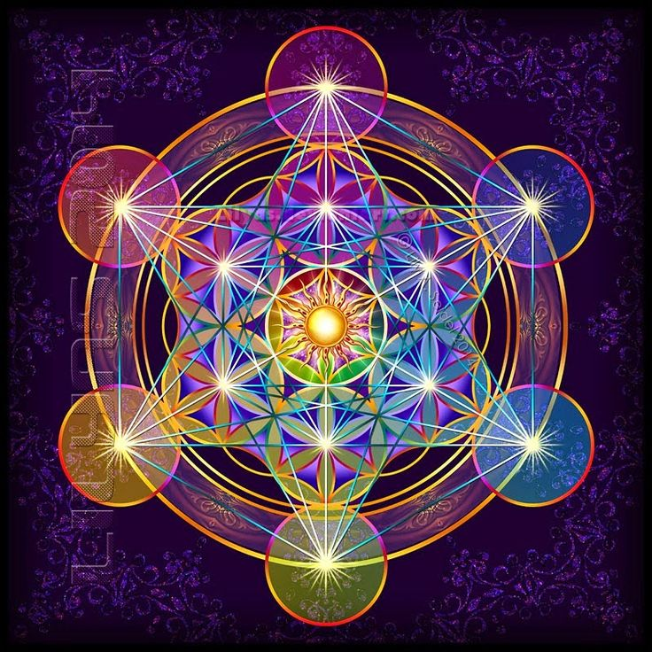 Cada célula contiene la información de la perfecta salud, por lo tanto en cada Ser habita la memoria universal de la armonía y la pleni...