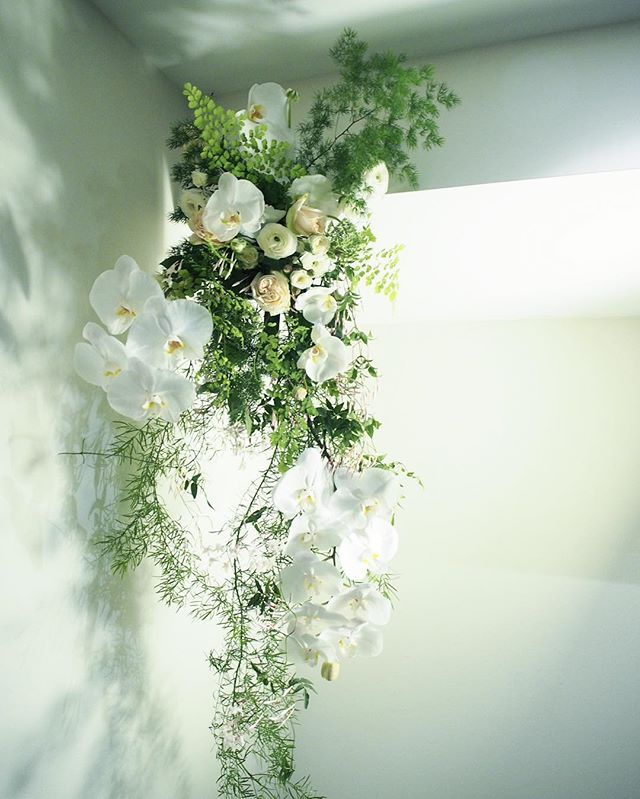 Bloodwood Botanica | Shadows   Suspended cascading wall piece for a dream wedding. Featuring a sellection of sustainably locally grown white orchids, Roses, white phalaenopsis orchids, asasparagus fern & maidenhair