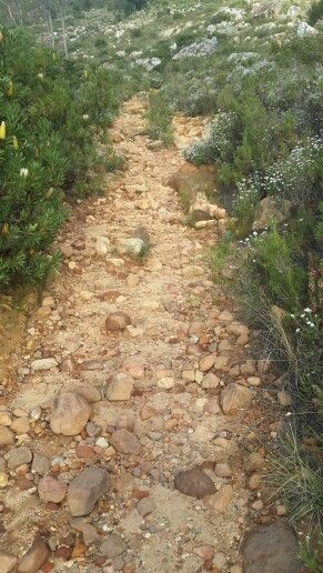 Table Mountain foot path