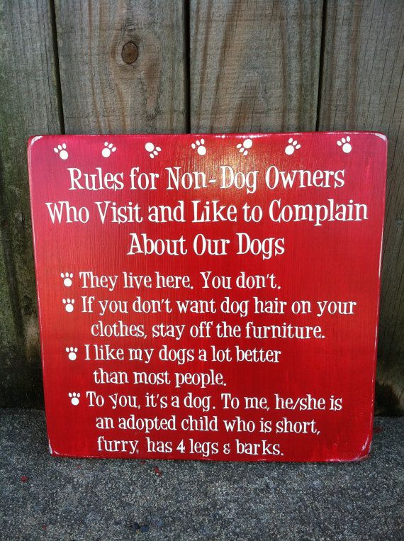 "Rules for Non-Dog Owners - Subway Sign - Hand Painted and Distressed -11""x11"" on Etsy, $29.00"