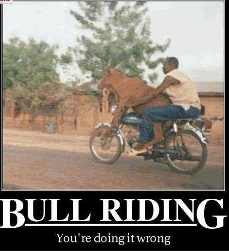 I wonder who riding who?