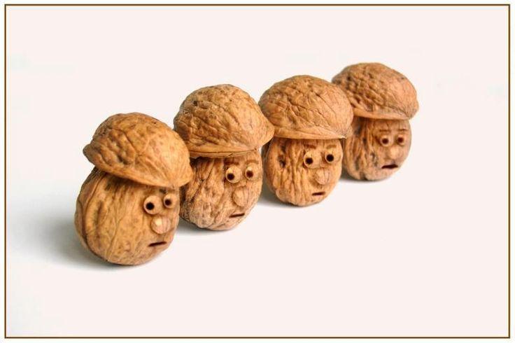 hlavy z ořechů