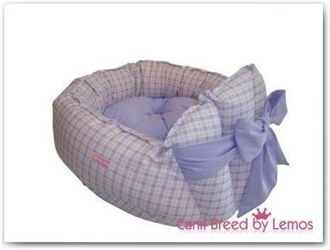 Boutique para filhotes de Yorkshire | Canil de Yorkshire Terrier