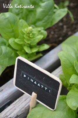 Kotipuutarhani. Kasvatuslaatikko. Kyltti, jossa kasvin nimi Dymo -laitteella kirjoitettu. / My home garden. Frame from wood for planting. Sign with plant's name created with Dymo -writer.