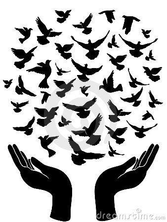 Handen die vredesduif vrijgeven