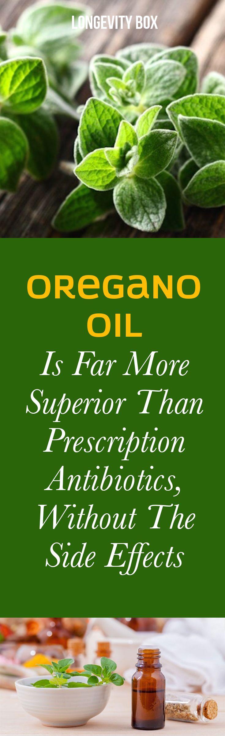 Oregano oil is far more superior than prescription antibiotics