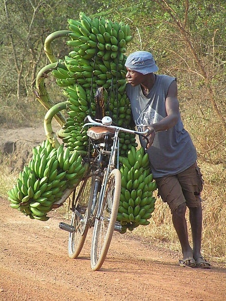 The use of bicycles around the world continues to amaze me. South Africa