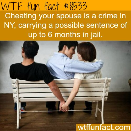 You can go 6 months in jail for adultery in New York - WTF fun facts