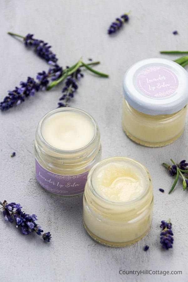 Homemade Lavender Lip Balm Recipe {with and without beeswax}   Lip balm recipes, Coconut oil lip ...