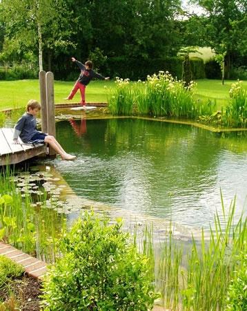Disfrute de nadar en un entorno natural todo el año, rodeado de lirios, juncos…