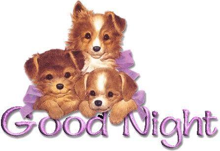 Good Night Graphics, Comments, Images for Myspace, Orkut, Hi5
