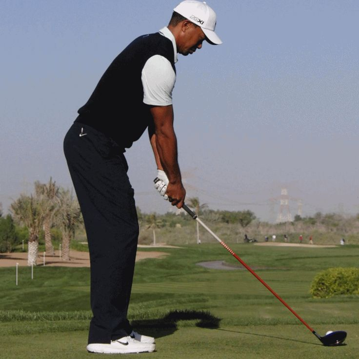Tiger Woods 2013 Swing Sequence GIF