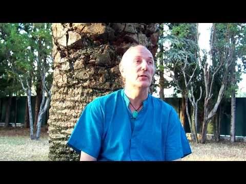 shamanisme et nourriture pranique - introduction - - YouTube un shaman est une personne qui fait le lien entre la realite et le monde des esprits. Il y a trois sortent desprits: 1)Les grands esprits qui ont cree le monde:leau, la terre, le feu et lair. Unipi=tente de sudation=sweet lodge=symbole de la creation du mondeca dire que la tous les grands esprits sont presents. Et les grandq esprits sont servis par les esprits de la nature. Pour un shamane tout ce qui existe est sacré et est une…