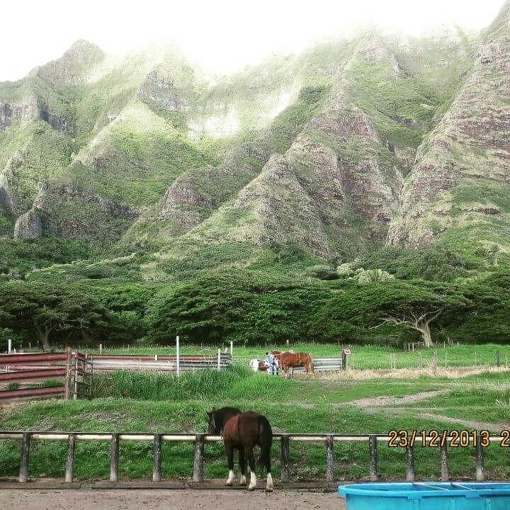 Kualoa Ranch-Oahu Hawaii