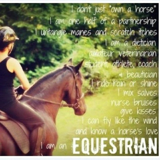 """""""I don't just own a horse....I am an EQUESTRIAN"""""""