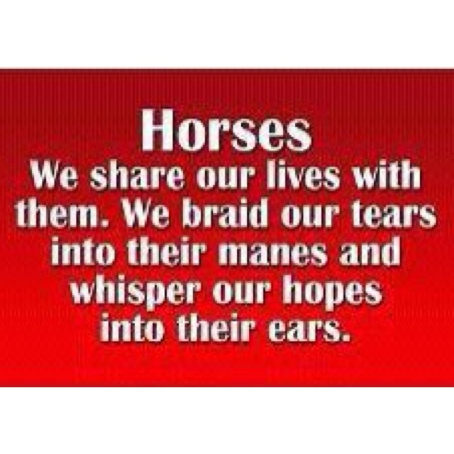 Horses: We share our lives with them. We braid our tears into their manes and whisper our hopes into their ears.