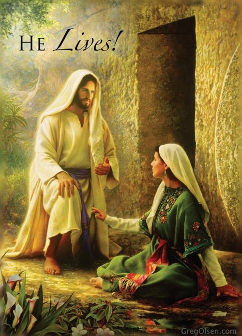 Image result for Bible events pictures