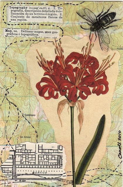 Postcards as art