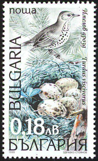 Stamp: Mistle Thrush (Turdus viscivorus) (Bulgaria) (Birds) Mi:BG 4422,Yt:BG 3833