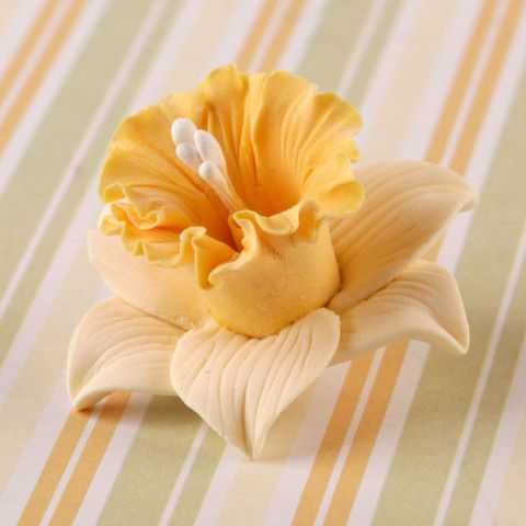 These beautiful Daffodil Flowers are great for baby showers, weddings, and a variety of celebrations. Readymade by hand from gumpaste, these flowers offer a way of decorating cakes hassle free for bot