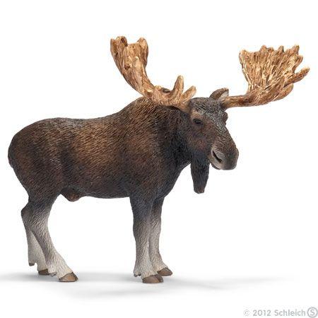 Moose Bull 14619 Item Page - Schleich Toys Animals Website
