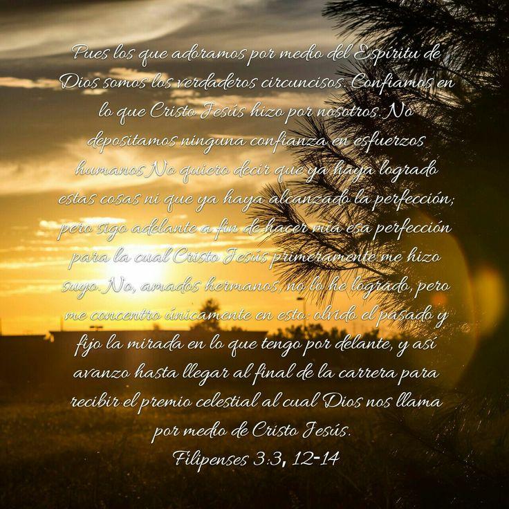 Filipenses 3:3, 12-14