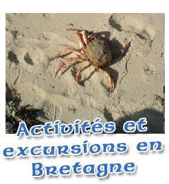 Exercices pour se préparer aux examens et tests de français FLE : DELF, DALF, DILF, TCF   DELF, DALF, etc   Scoop.it
