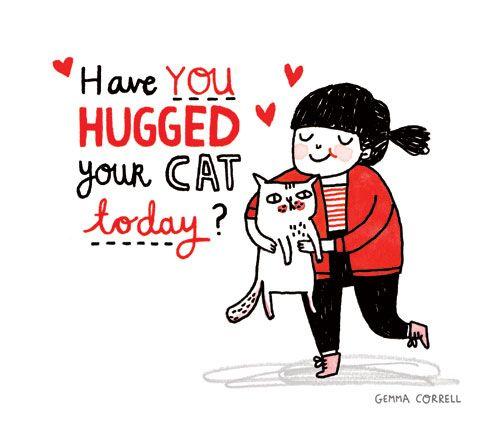 Gemma Correll's work:  Hockey Puck, Cat Today, Cat Hug, Crazy Cat, Gemmacorrel, Gemma Correl, Cat Lovers, Cat Lady, Animal