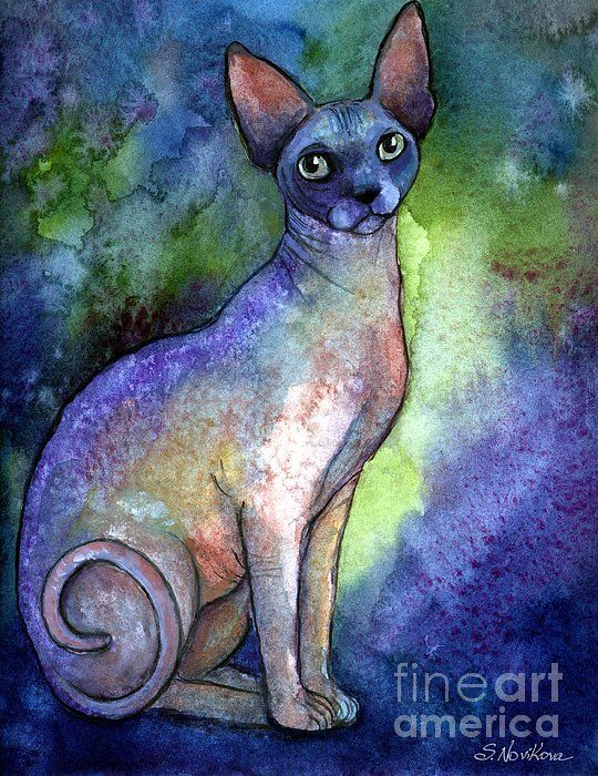 Soulful Sphynx cat watercolor painting by Svetlana Novikova (c),  Colorful prints are available on gallery wrapped canvas, metal, acrylics, paper, cards, framed and unframed.  Prices start from $27 www.SvetlanaNovikova.com