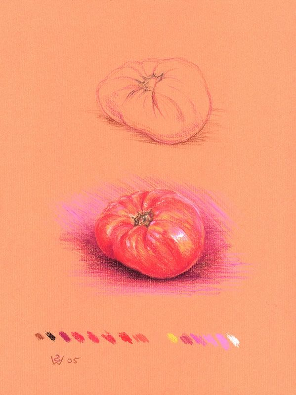 15-Colour Sfumato Tomato 2005 pastel chalks on red-ochre Ingres paper 32.5 x 24.5 cm by © Susan Dorothea White