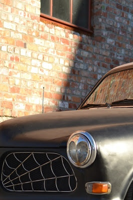 Our Rockabilly Elli, Volvo Amazon