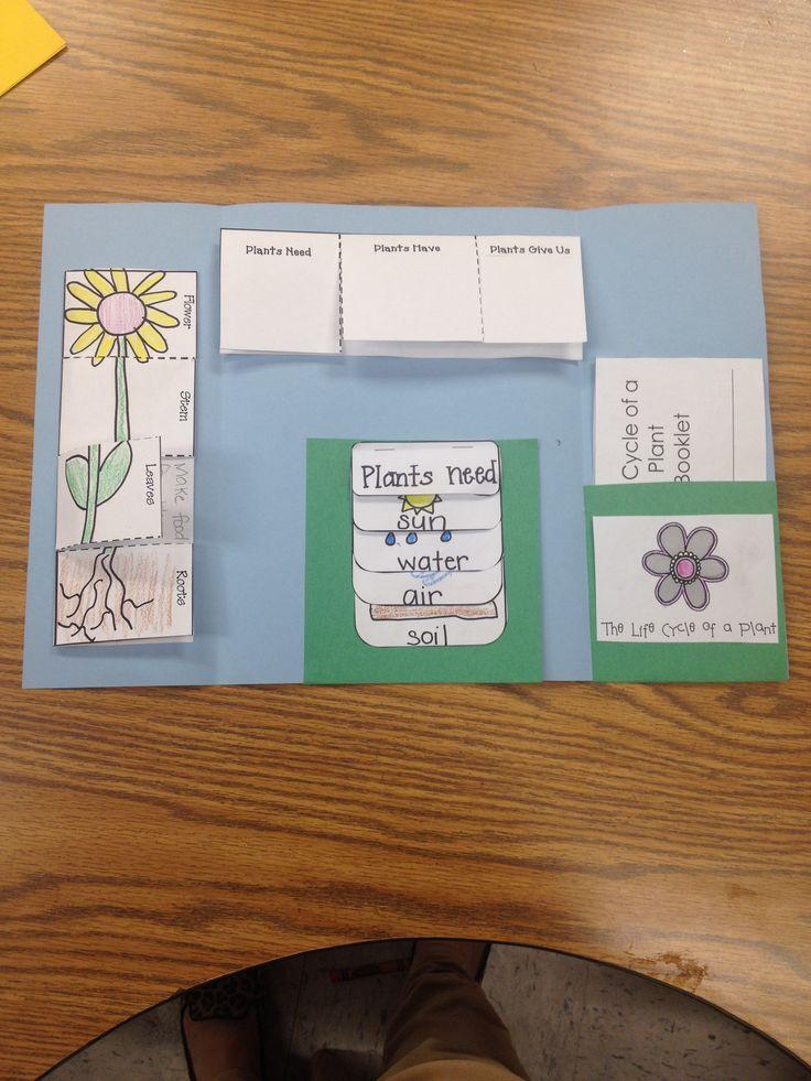 Classroom Journal Ideas : Best classroom ideas images on pinterest