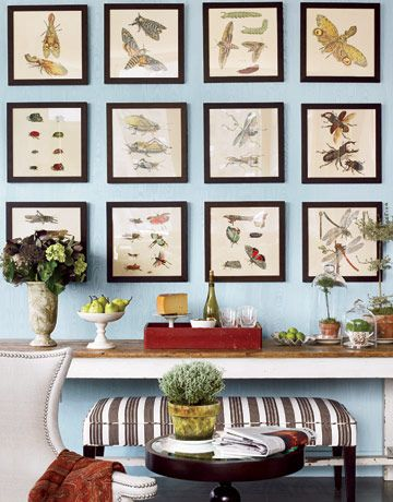 Insect prints may sound offbeat, but look beautiful in a gallery-wall format!