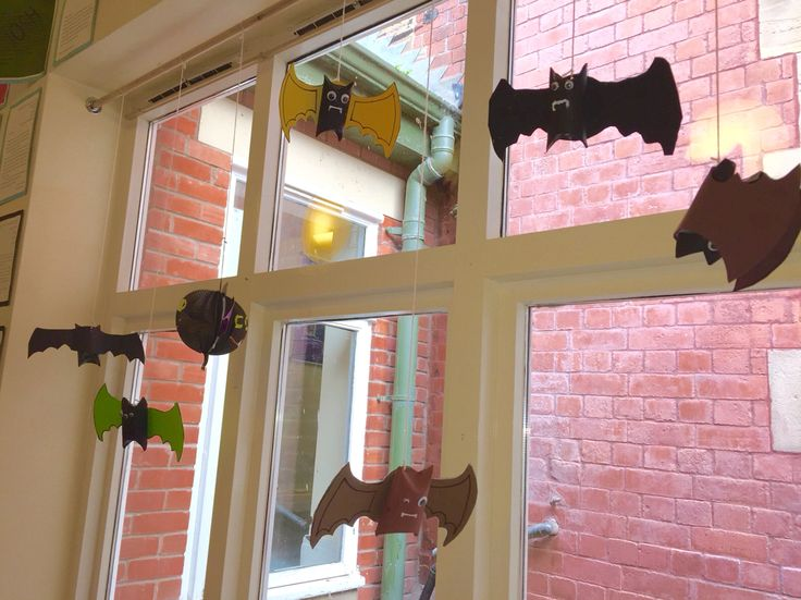 Our hanging bat display