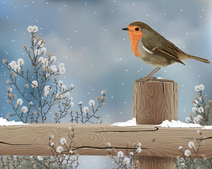#Winter #Robin #Landscape #Ultimaedizione #Snow #Christmas #Gift