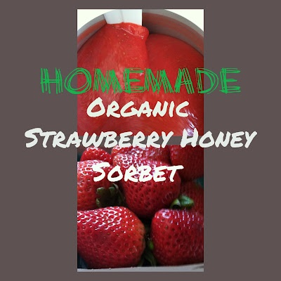 strawberry honey sorbet, EASY and delicious