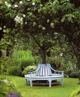 Wrap around tree bench plans free woodworking projects for Benches that go around trees