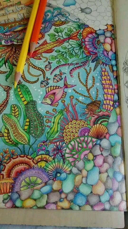 Adult Coloring Books Johanna Basford Secret Garden Colored Pencil Tutorial Sea Creatures Pencils Argentina Sketchbooks Hobbies