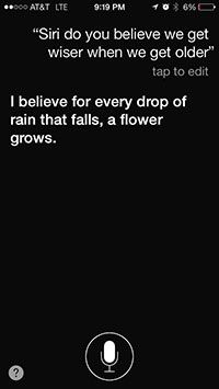 How can we give meaning to life? All evidence to date suggests it's chocolate. Do you believe we get wiser as we grow older? I believe that for every drop of rain that falls, a flower grows.