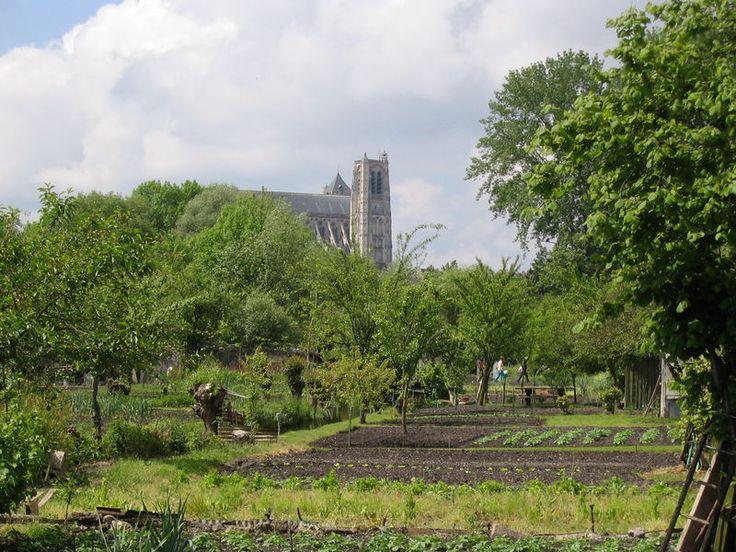 La cathédrale Saint Etienne de Bourges vu des marais