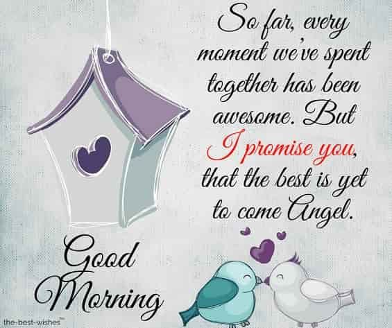 120 Best Good Morning Angel Images Good Morning Love You Good Morning My Love Good Morning Sweetheart Images