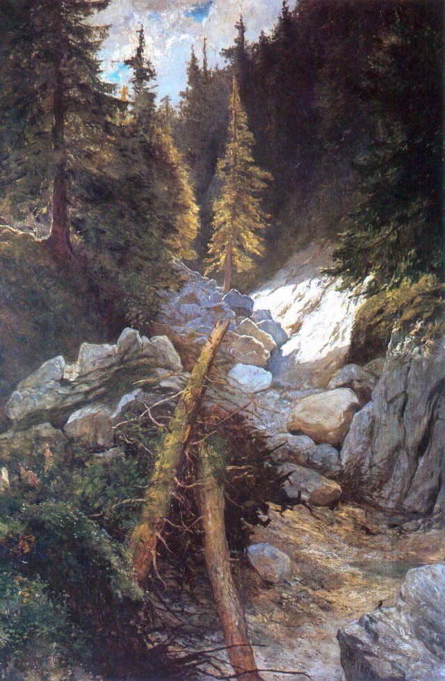 Brook in Tatra Mountains (Potok w Tatrach) - Wojciech gerson