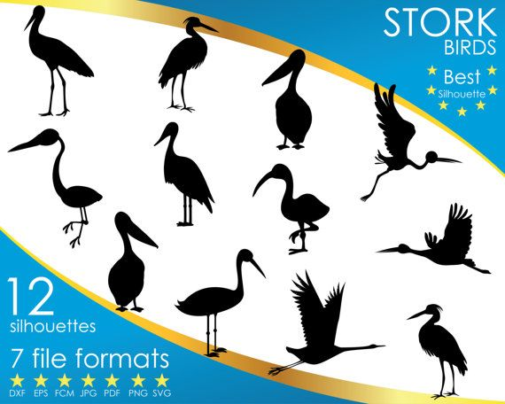 Hey, I found this really awesome Etsy listing at https://www.etsy.com/listing/501178132/12-silhouettes-stork-storks-bird-birds