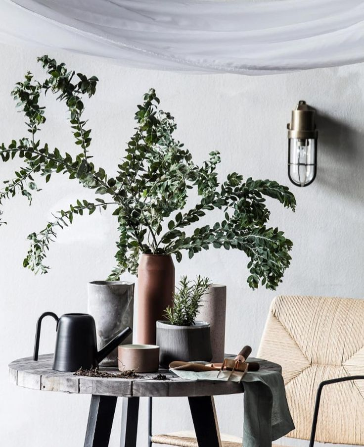 Bring the indoors out our the outdoors in - it doesn't matter which way you look at it this beautiful setting by @ashleypratt & @mareehomer.photography is  Check it out in the latest @houseandgarden magazine. #zakkia #pressfeature #wateringcan #botanical #interiordesign