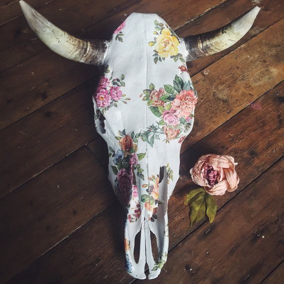 25 Best Ideas About Cow Skull Decor On Pinterest Deer