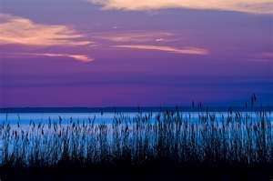 Chesapeake Bay: Favorite Places, Bays Dreams, Dreams Backyard, The Bays, Favorite Families, Chesapeake Bays On, Favorite Beautiful Places, Favoritebeauti Places, Sunrises Sunsets