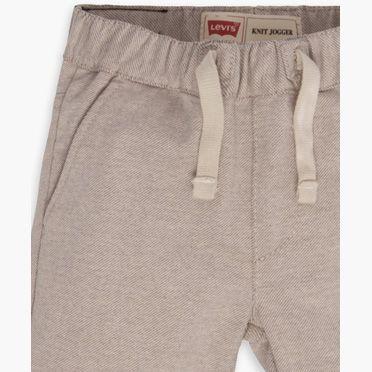 Levi's Toddler Boys (2T-4T) Santa Cruz Knit Short 2T
